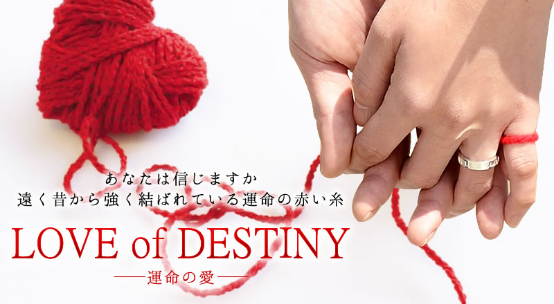 運命の愛 love of destiny